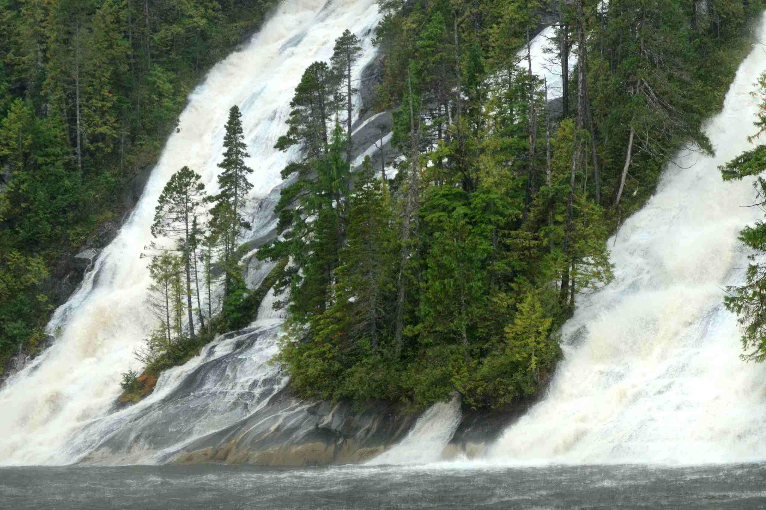 Great Bear Rainforest 2012